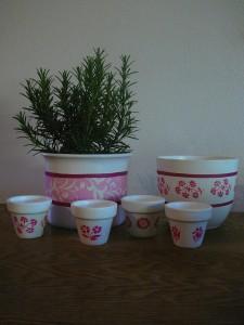 Blumentöpfe pink 2