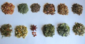 Fasten Teesortensammlung
