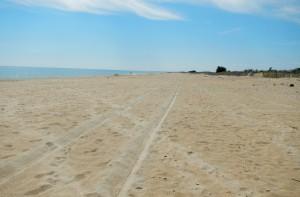 Strand Frankreich 2014